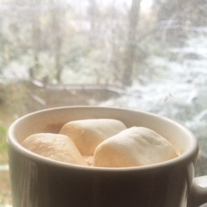 Homemade Peppermint Hot Cocoa with a Touch of Tennessee Snow