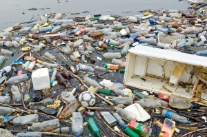 How reducing our use of single use plastics can help improve our overall heath and save the oceans and the animals that live there. www.kanganrue.com